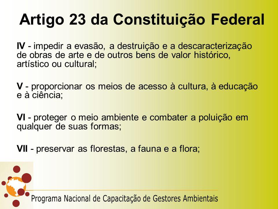 Artigo 23 da Constituição Federal