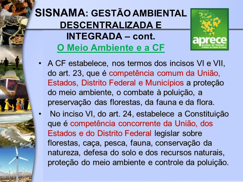 SISNAMA: GESTÃO AMBIENTAL DESCENTRALIZADA E INTEGRADA – cont.