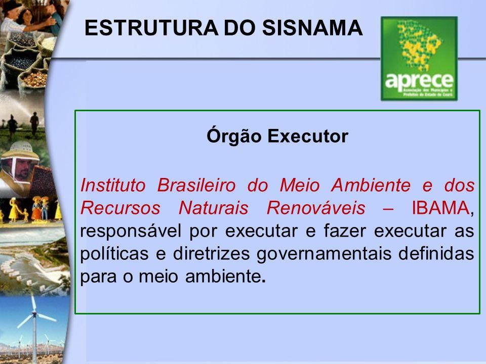 ESTRUTURA DO SISNAMA Órgão Executor