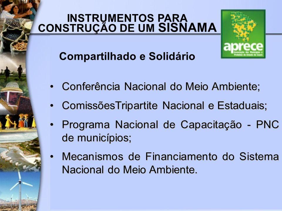 INSTRUMENTOS PARA CONSTRUÇÃO DE UM SISNAMA Compartilhado e Solidário