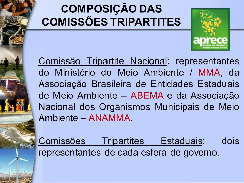 COMPOSIÇÃO DAS COMISSÕES TRIPARTITES
