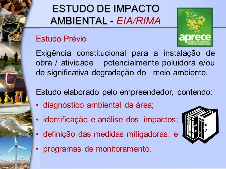 ESTUDO DE IMPACTO AMBIENTAL - EIA/RIMA