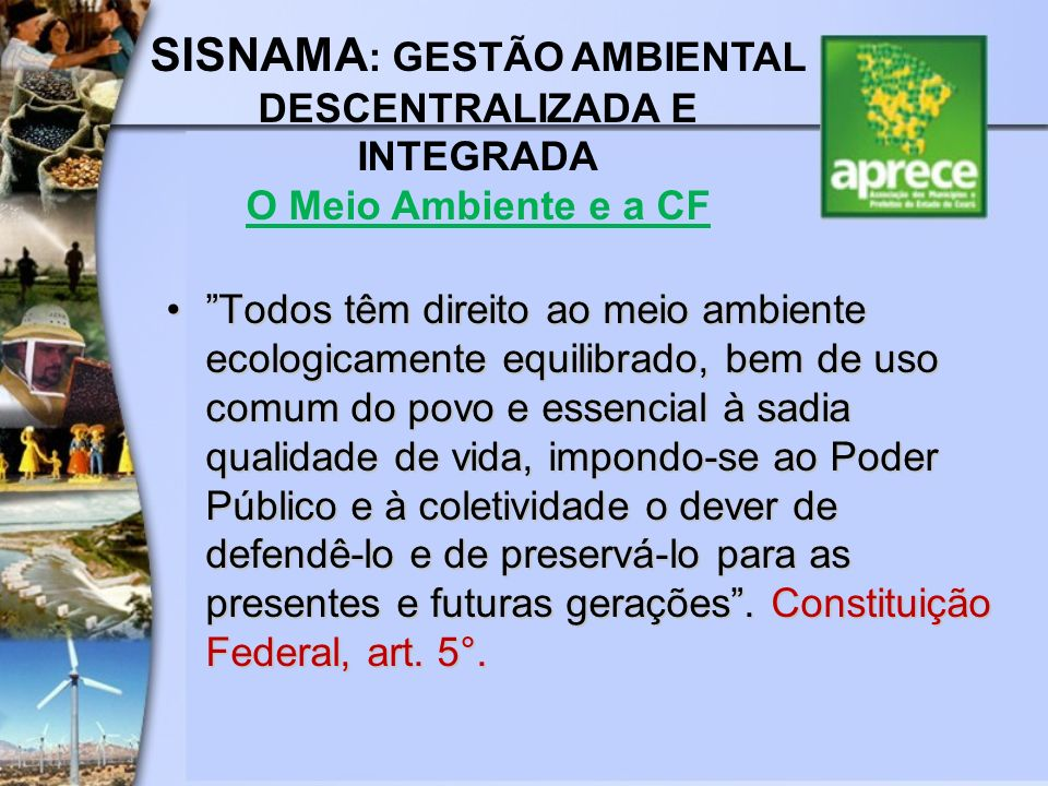SISNAMA: GESTÃO AMBIENTAL DESCENTRALIZADA E INTEGRADA