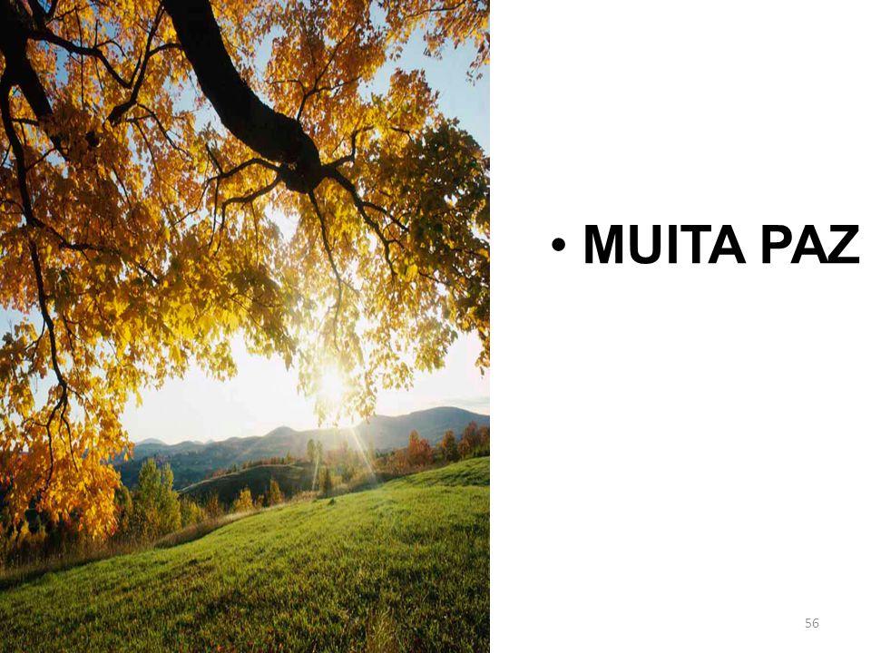 MUITA PAZ