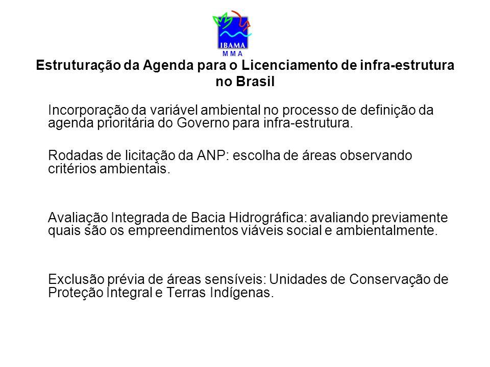 Estruturação da Agenda para o Licenciamento de infra-estrutura no Brasil