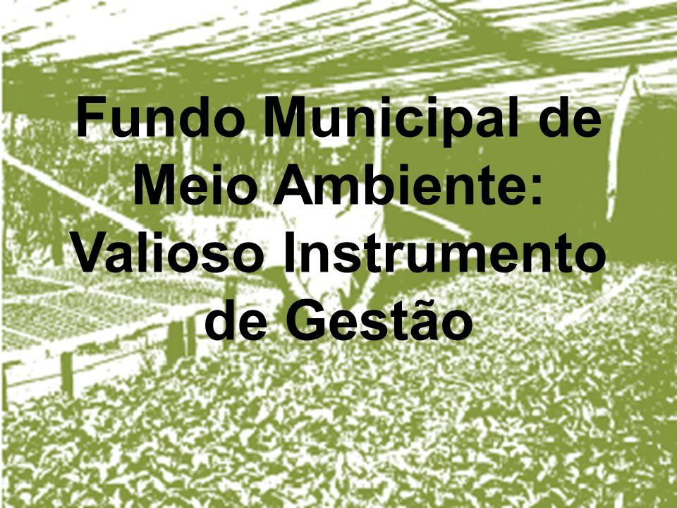 Fundo Municipal de Meio Ambiente: Valioso Instrumento de Gestão