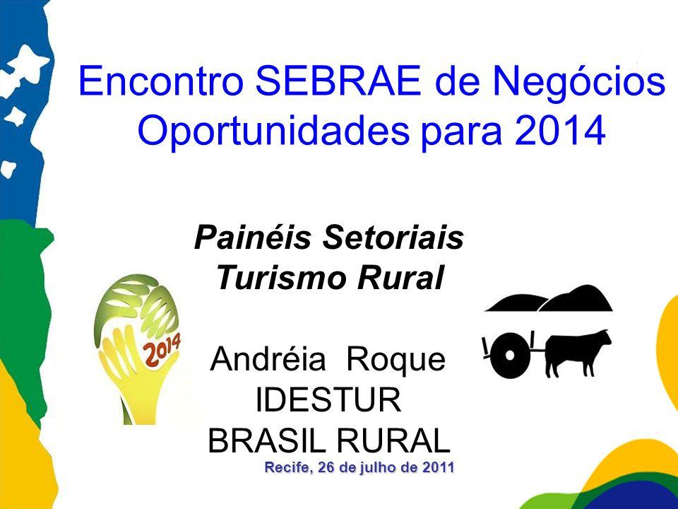 Encontro SEBRAE de Negócios Oportunidades para 2014