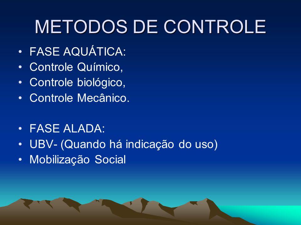 METODOS DE CONTROLE FASE AQUÁTICA: Controle Químico,