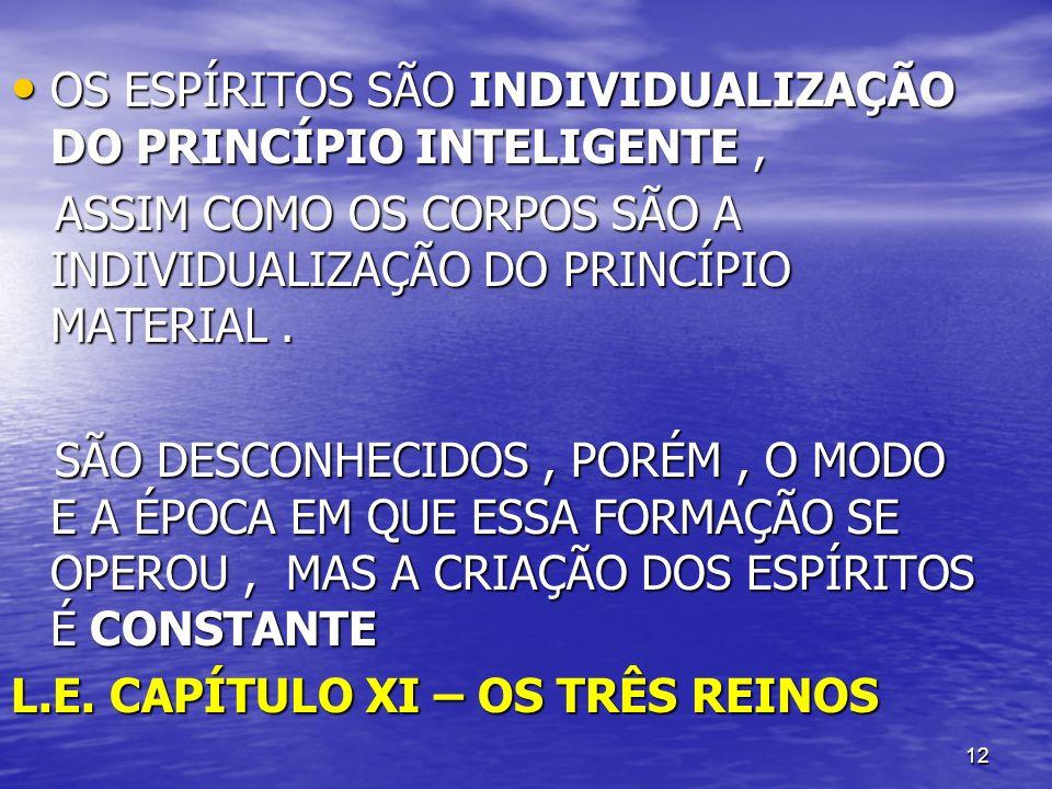OS ESPÍRITOS SÃO INDIVIDUALIZAÇÃO DO PRINCÍPIO INTELIGENTE ,