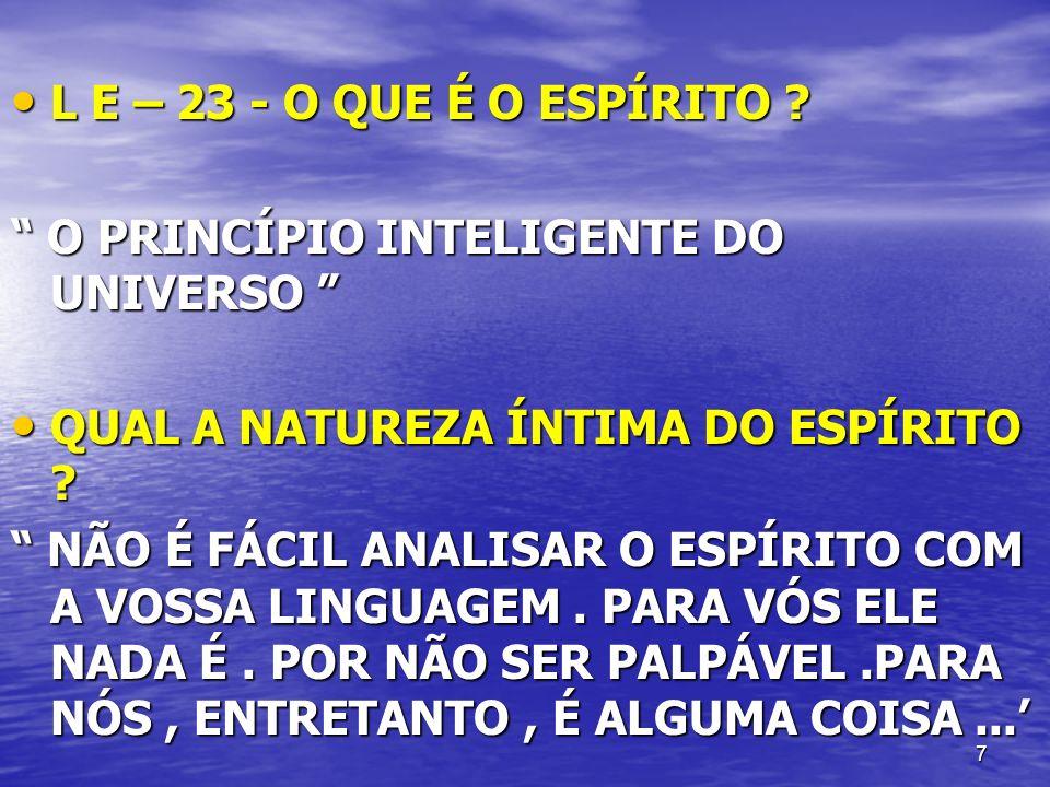 L E – 23 - O QUE É O ESPÍRITO O PRINCÍPIO INTELIGENTE DO UNIVERSO QUAL A NATUREZA ÍNTIMA DO ESPÍRITO