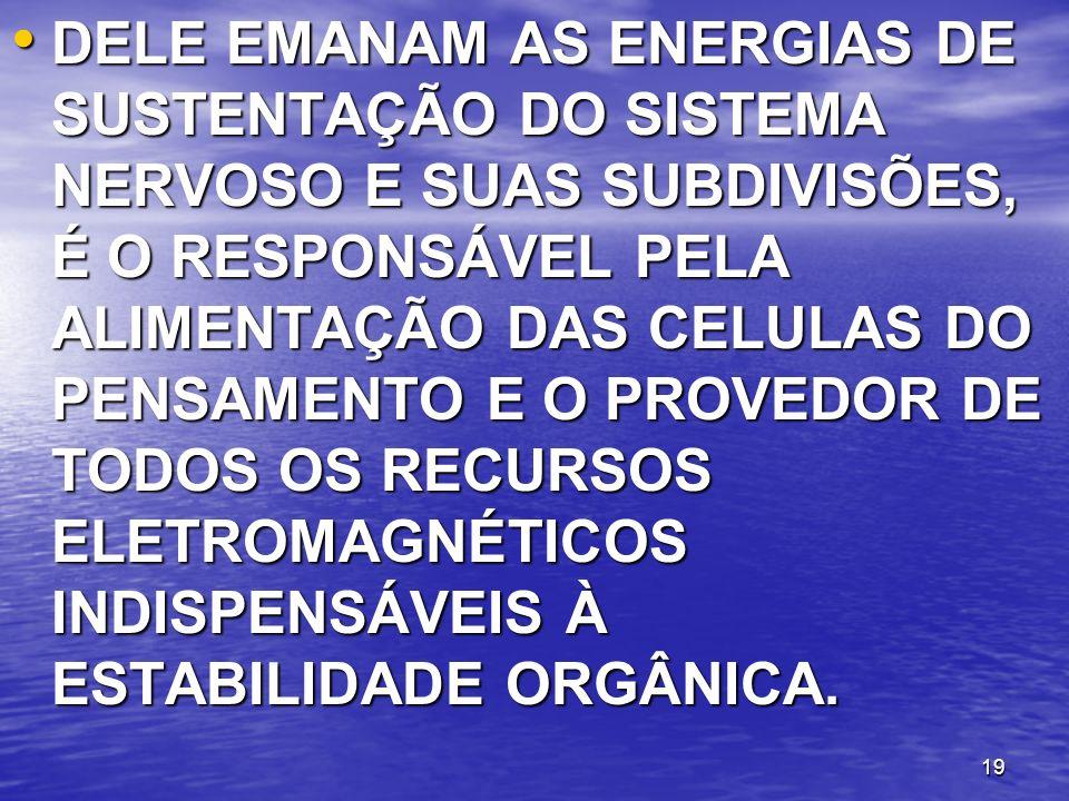 DELE EMANAM AS ENERGIAS DE SUSTENTAÇÃO DO SISTEMA NERVOSO E SUAS SUBDIVISÕES, É O RESPONSÁVEL PELA ALIMENTAÇÃO DAS CELULAS DO PENSAMENTO E O PROVEDOR DE TODOS OS RECURSOS ELETROMAGNÉTICOS INDISPENSÁVEIS À ESTABILIDADE ORGÂNICA.