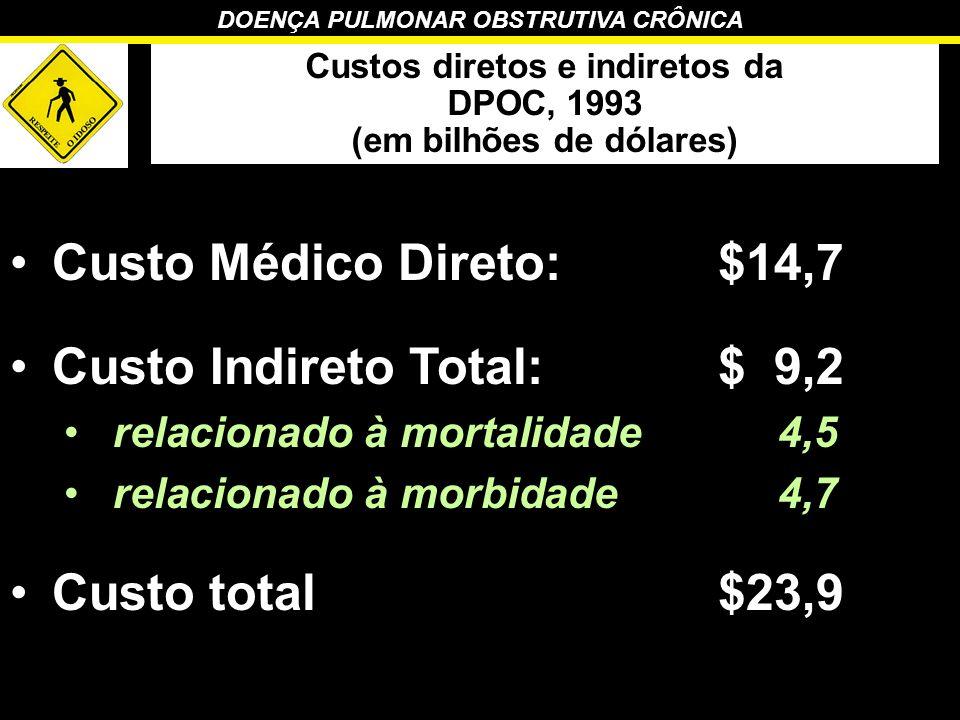 Custos diretos e indiretos da (em bilhões de dólares)