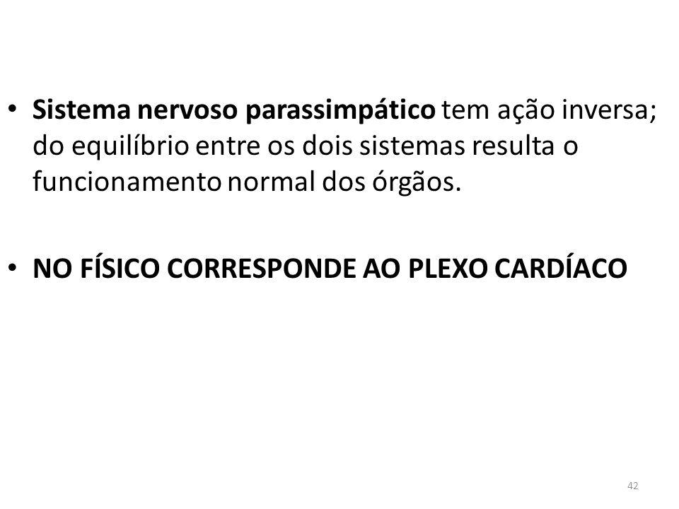 Sistema nervoso parassimpático tem ação inversa; do equilíbrio entre os dois sistemas resulta o funcionamento normal dos órgãos.