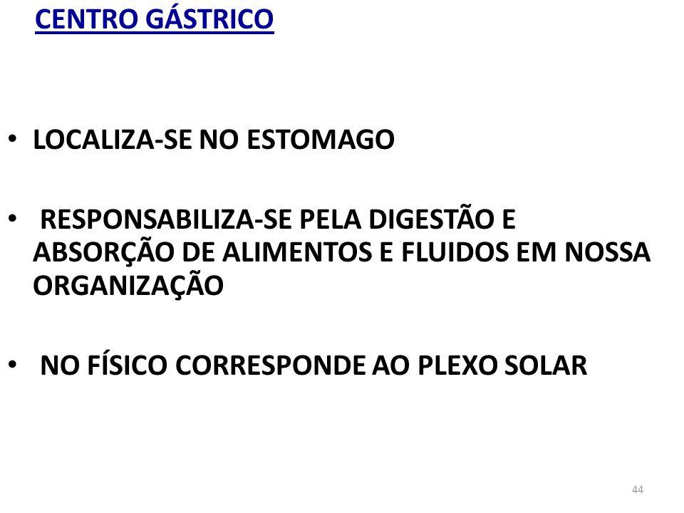 CENTRO GÁSTRICOLOCALIZA-SE NO ESTOMAGO.