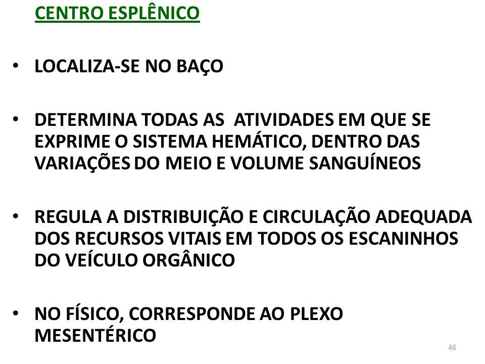 CENTRO ESPLÊNICOLOCALIZA-SE NO BAÇO.