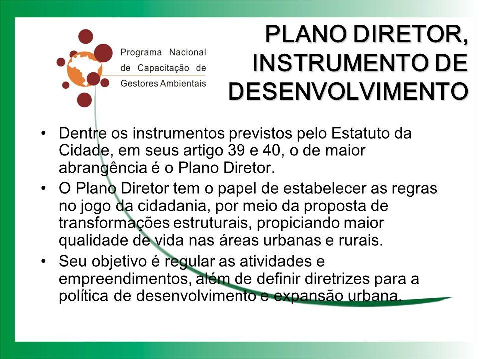 PLANO DIRETOR, INSTRUMENTO DE DESENVOLVIMENTO