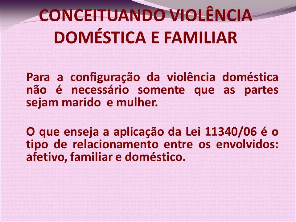 CONCEITUANDO VIOLÊNCIA DOMÉSTICA E FAMILIAR