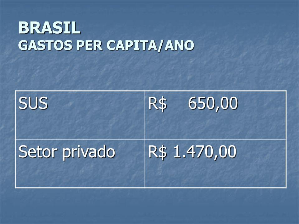 BRASIL GASTOS PER CAPITA/ANO