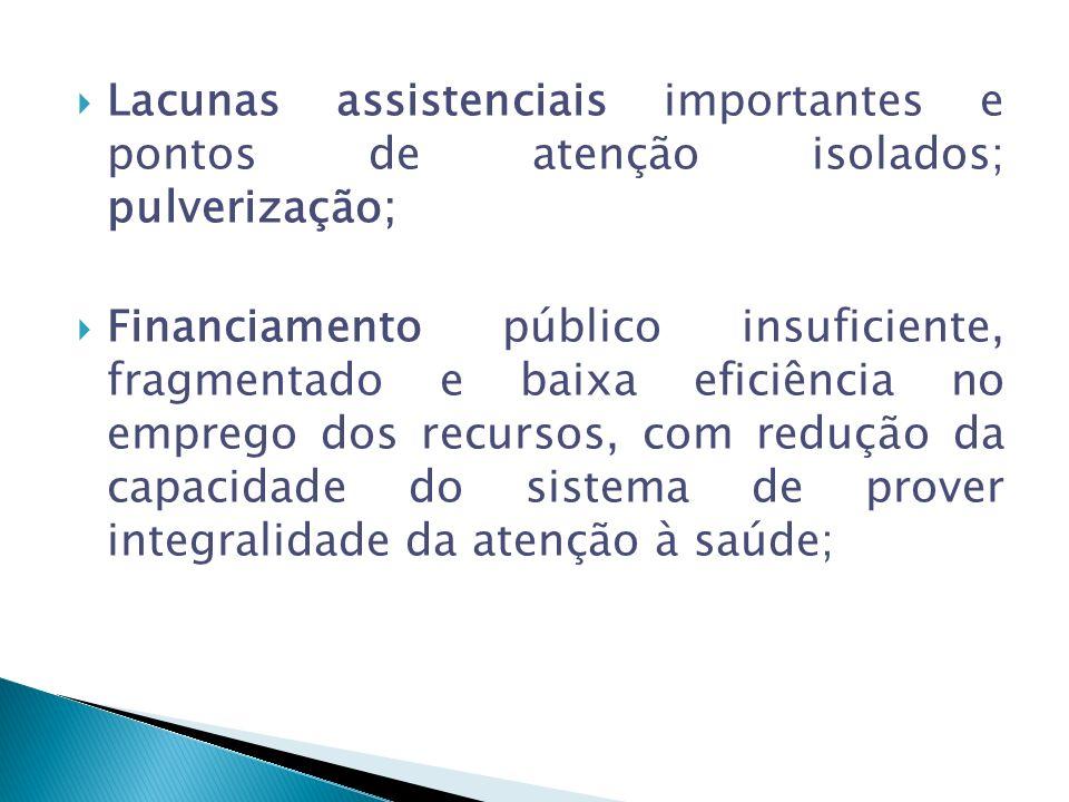 Lacunas assistenciais importantes e pontos de atenção isolados; pulverização;