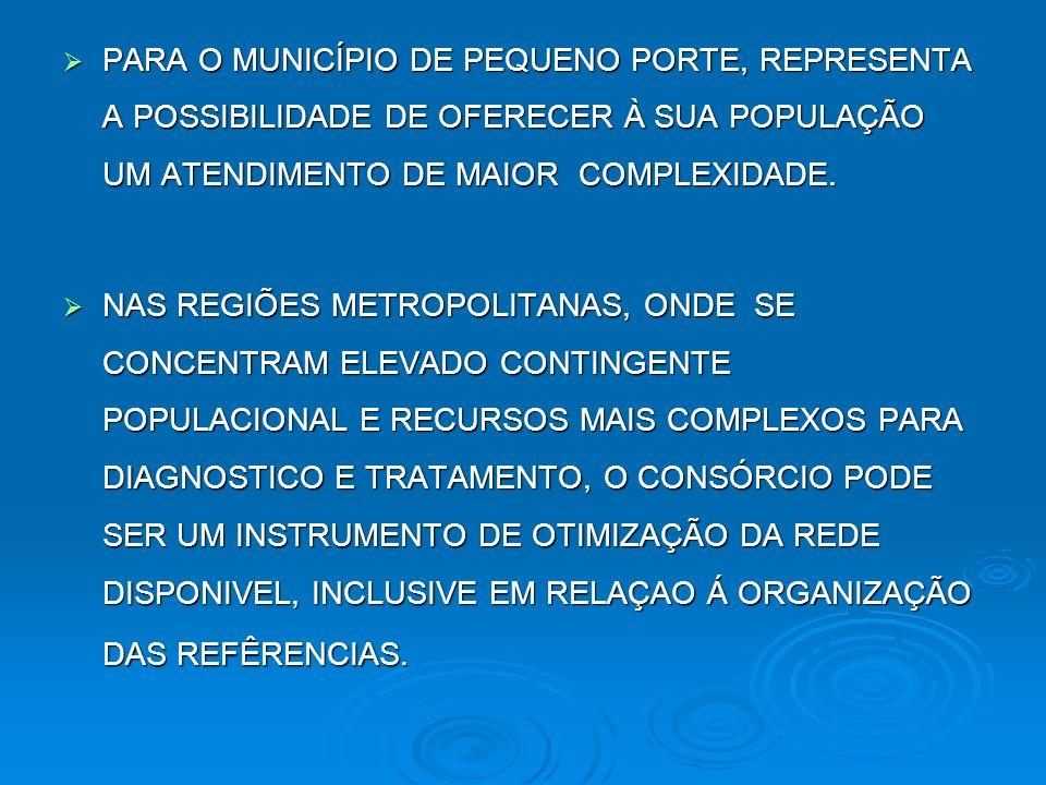 PARA O MUNICÍPIO DE PEQUENO PORTE, REPRESENTA A POSSIBILIDADE DE OFERECER À SUA POPULAÇÃO UM ATENDIMENTO DE MAIOR COMPLEXIDADE.