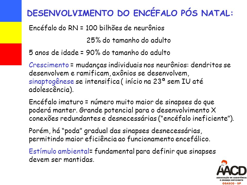 DESENVOLVIMENTO DO ENCÉFALO PÓS NATAL: