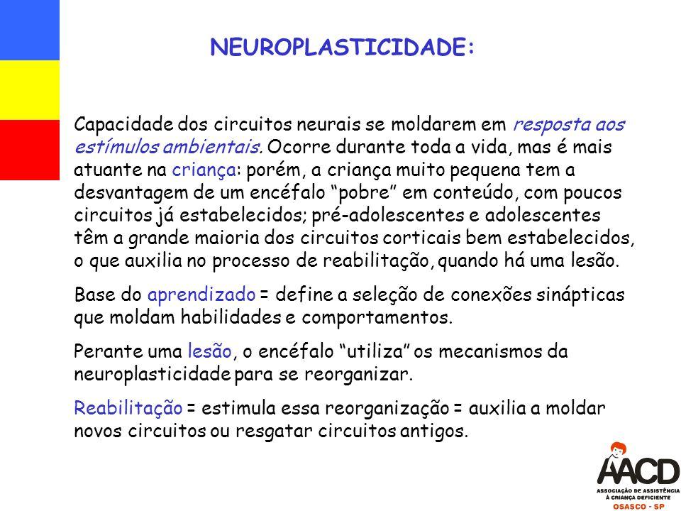 NEUROPLASTICIDADE: