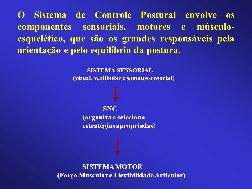 O Sistema de Controle Postural envolve os componentes sensoriais, motores e músculo-esquelético, que são os grandes responsáveis pela orientação e pelo equilíbrio da postura.
