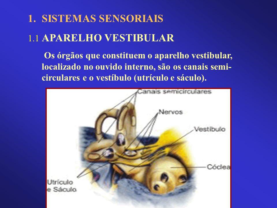 SISTEMAS SENSORIAIS 1.1 APARELHO VESTIBULAR