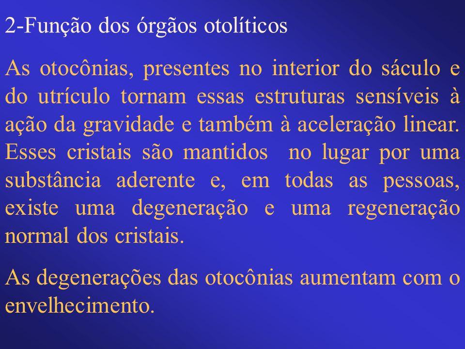 2-Função dos órgãos otolíticos