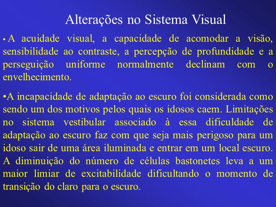 Alterações no Sistema Visual