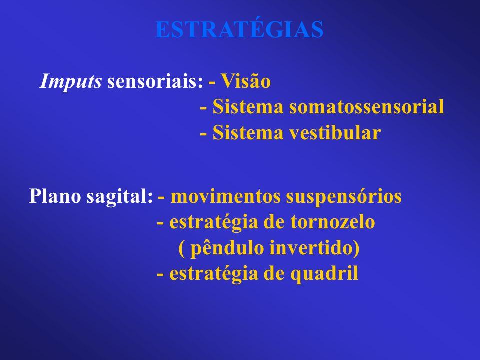 ESTRATÉGIAS Imputs sensoriais: - Visão - Sistema somatossensorial