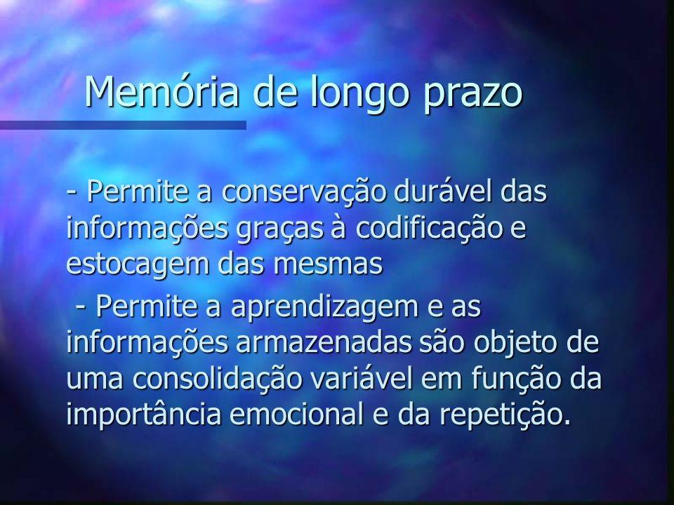 Memória de longo prazo - Permite a conservação durável das informações graças à codificação e estocagem das mesmas.