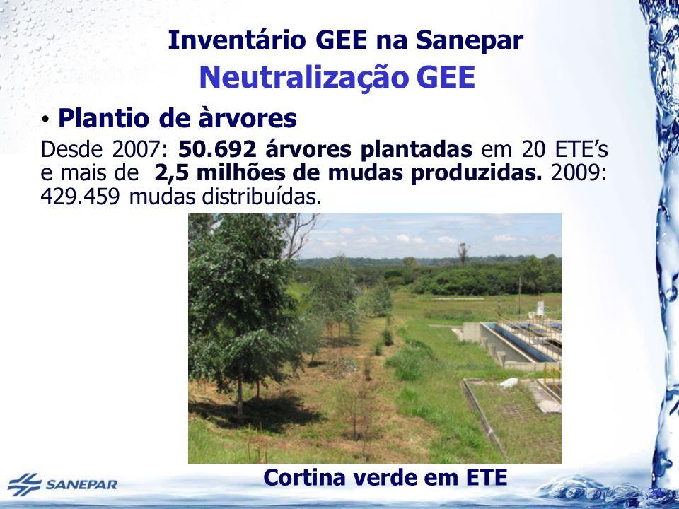 Neutralização GEE Plantio de àrvores