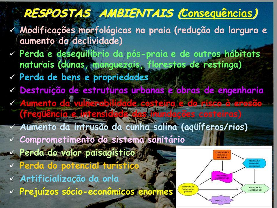 RESPOSTAS AMBIENTAIS (Consequências)