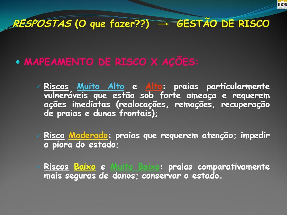 RESPOSTAS (O que fazer ) → GESTÃO DE RISCO