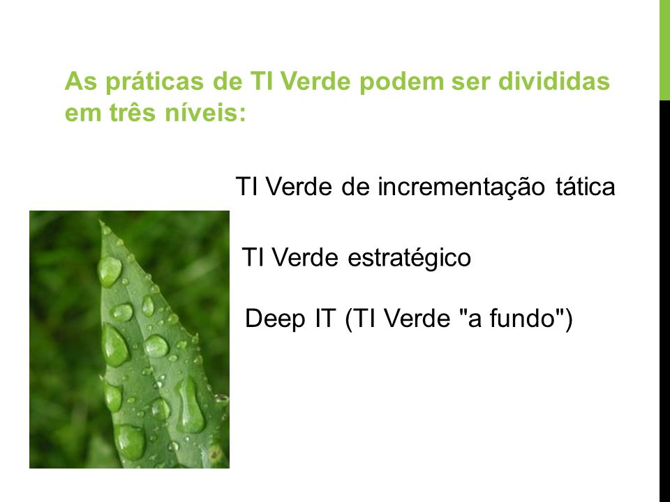 As práticas de TI Verde podem ser divididas em três níveis: