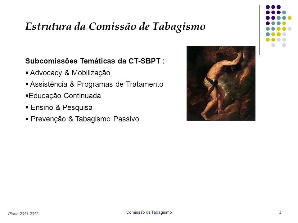 Estrutura da Comissão de Tabagismo