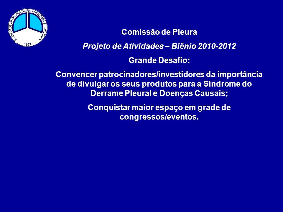 Projeto de Atividades – Biênio 2010-2012 Grande Desafio: