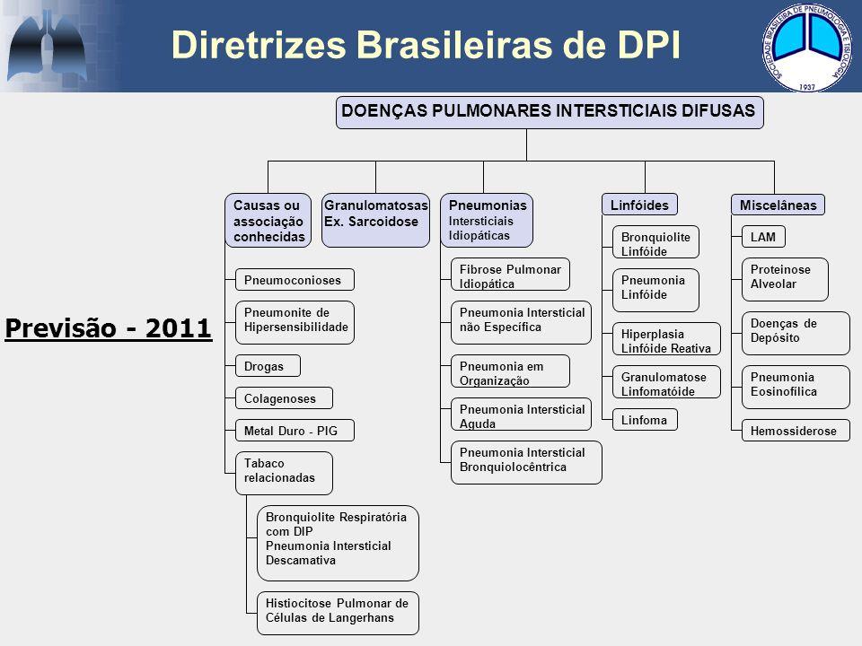 Diretrizes Brasileiras de DPI