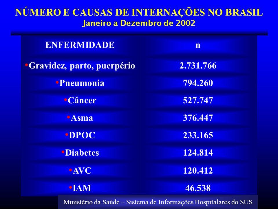 NÚMERO E CAUSAS DE INTERNAÇÕES NO BRASIL Janeiro a Dezembro de 2002