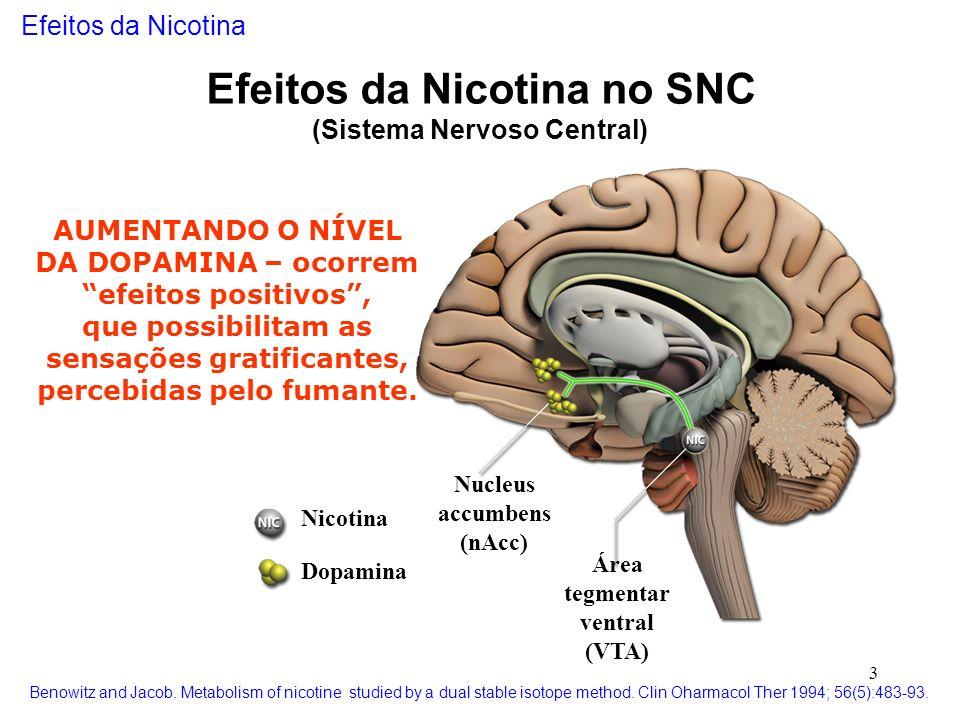 Efeitos da Nicotina no SNC (Sistema Nervoso Central)
