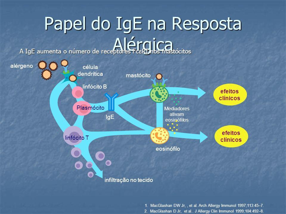Papel do IgE na Resposta Alérgica
