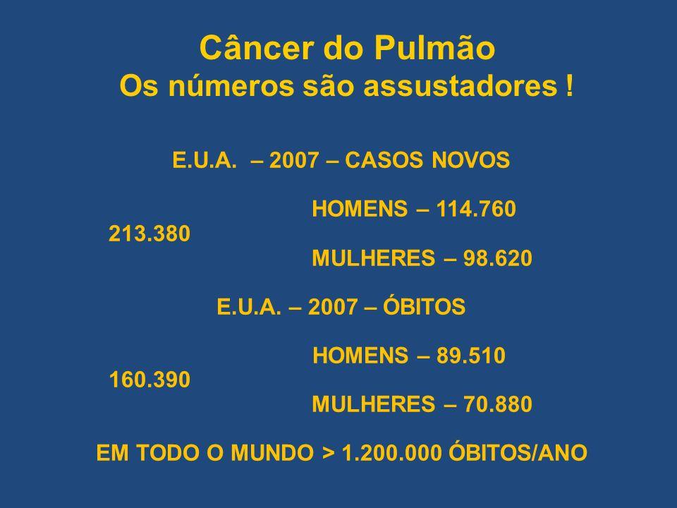Câncer do Pulmão Os números são assustadores !