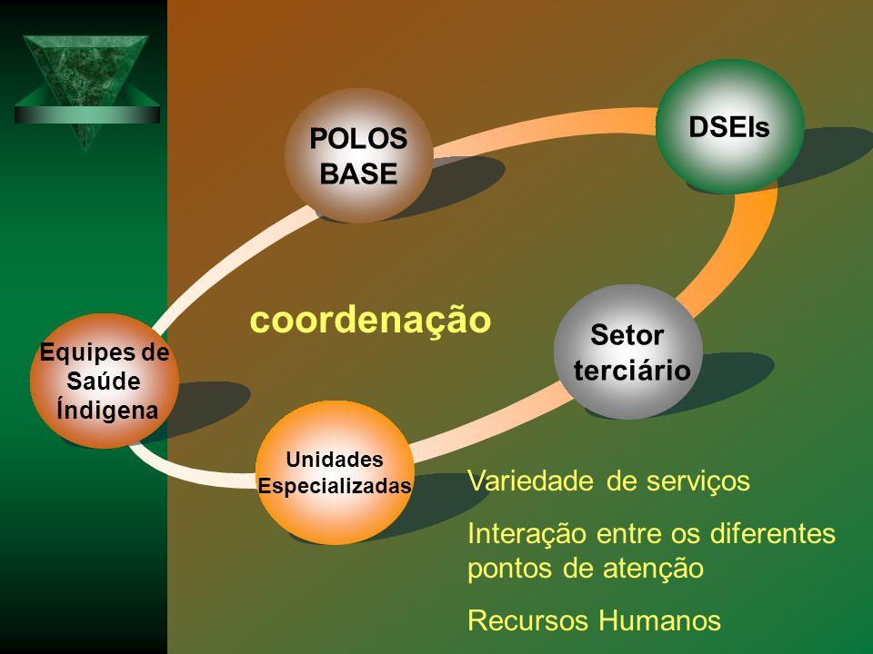 coordenação DSEIs POLOS BASE Setor terciário Variedade de serviços