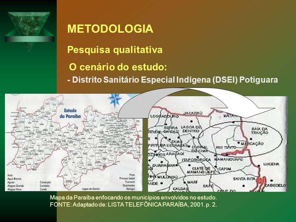 METODOLOGIA Pesquisa qualitativa