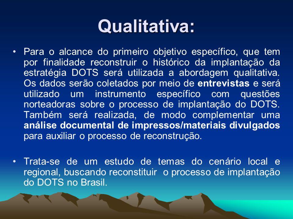 Qualitativa: