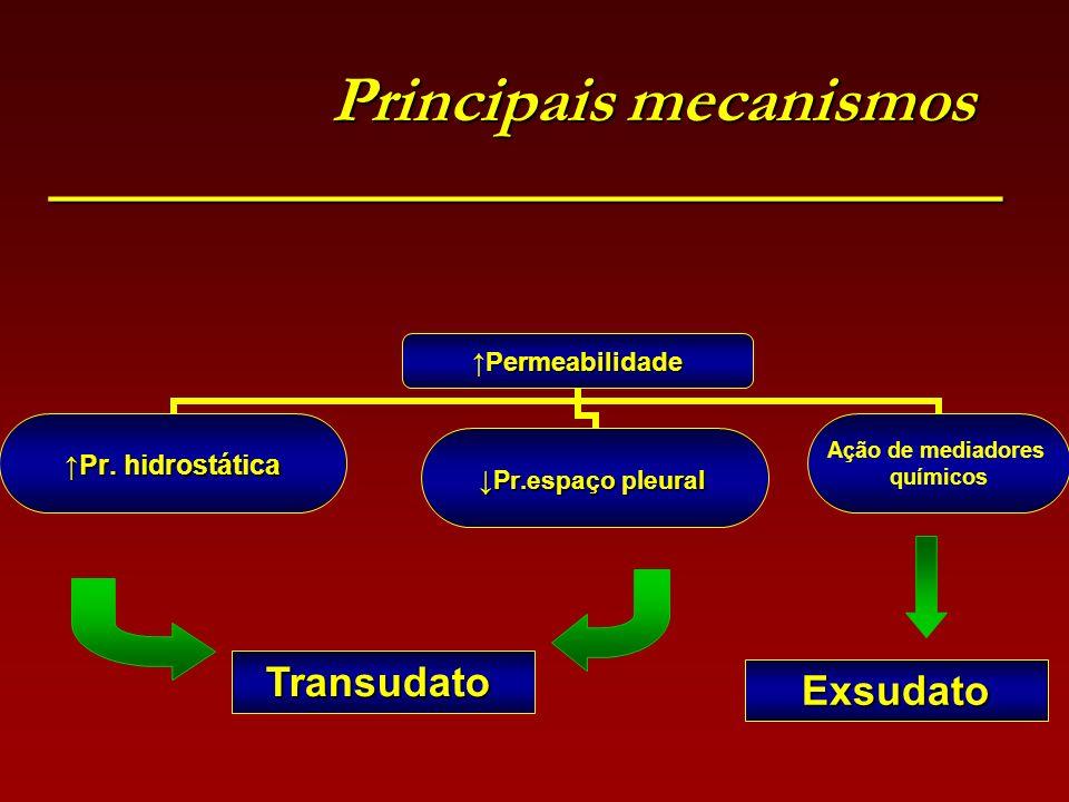 Principais mecanismos ________________________________