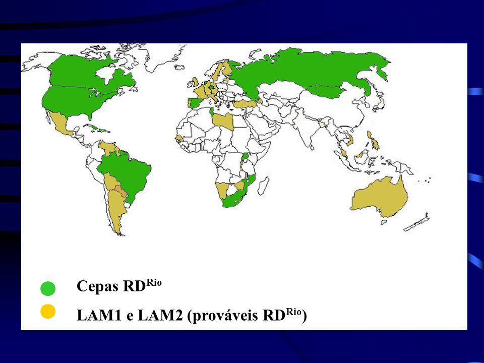 Cepas RDRio LAM1 e LAM2 (prováveis RDRio)