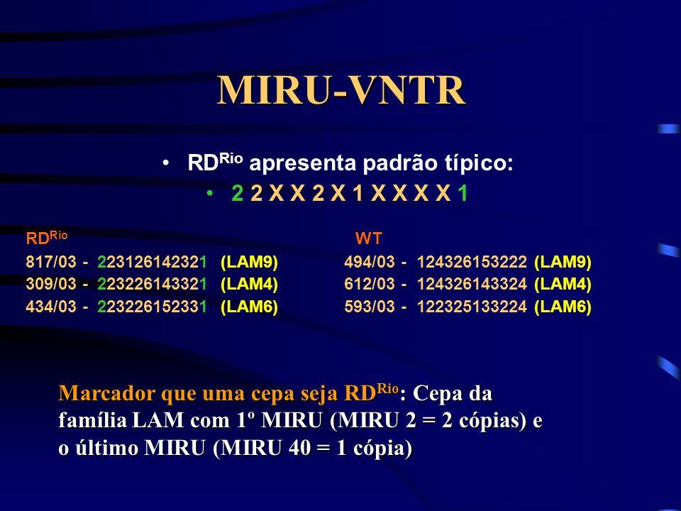 RDRio apresenta padrão típico: