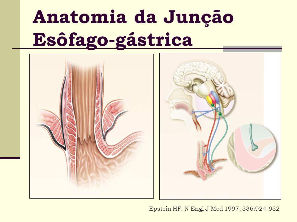 Anatomia da Junção Esôfago-gástrica